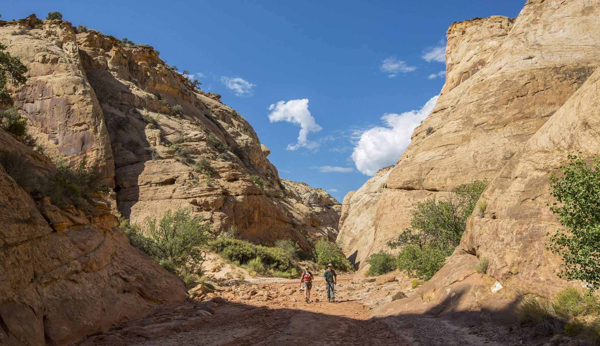 banner-capitol-gorge-hiking-sandy-trail